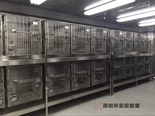实验动物房装修设计